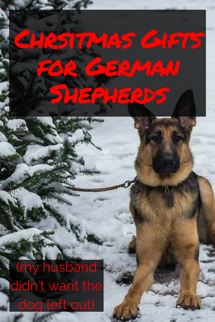 10 Christmas Gifts for Your German Shepherd- Twins and Coffee